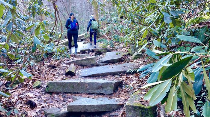 hiking-near-charlotte-nc-trails