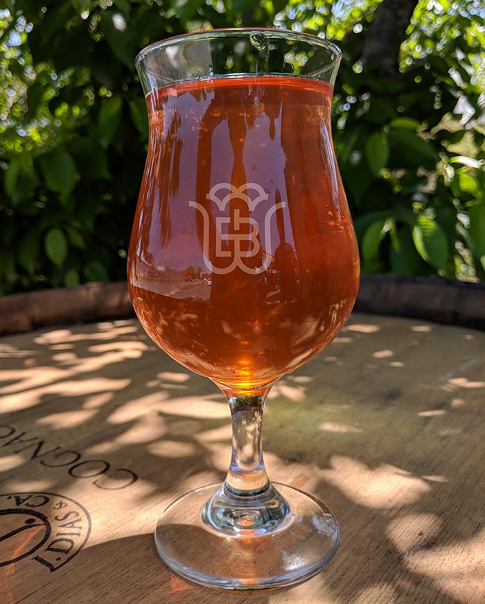 wild-blossom-sycamore-brewing-cider-charlotte