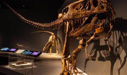Marvel at the life-sized exhibit, Tyrannosaurs: Meet the Family at Discovery Place Science on display now through September 3, entry $0-$20