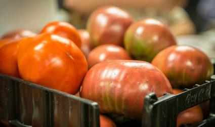 2018 Homegrown Tomato Festival