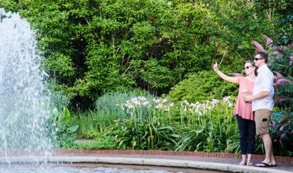 Sip & Stroll at the Garden