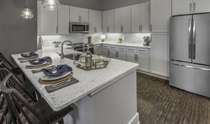 Brand new apartments with premium amenities at The Links Rea Farms