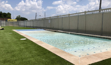 16,000-square-foot pet boarding facility with an outdoor swimming pool for dogs...