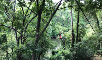 You can soar across the Catawba River on this island zipline canopy tour 30 minutes south of Charlotte