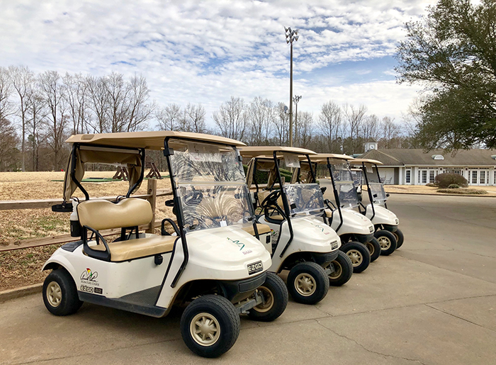 golf-carts-at-birkdale-golf-course