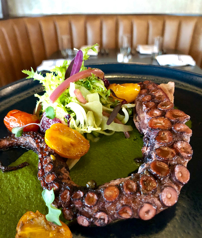 octopus-bar-marcel-restaurant-southpark