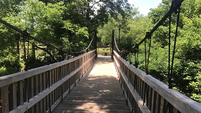 bridge-at-freedom-park