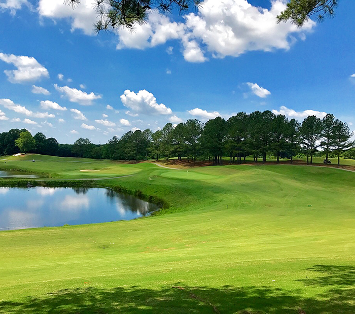 eagle-chase-golf-course-north-carolina