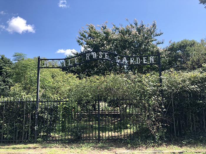 Rosie's Wine Garden signage