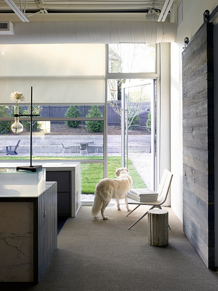 Pursley-Dixon-Architecture-office-tour-windows.