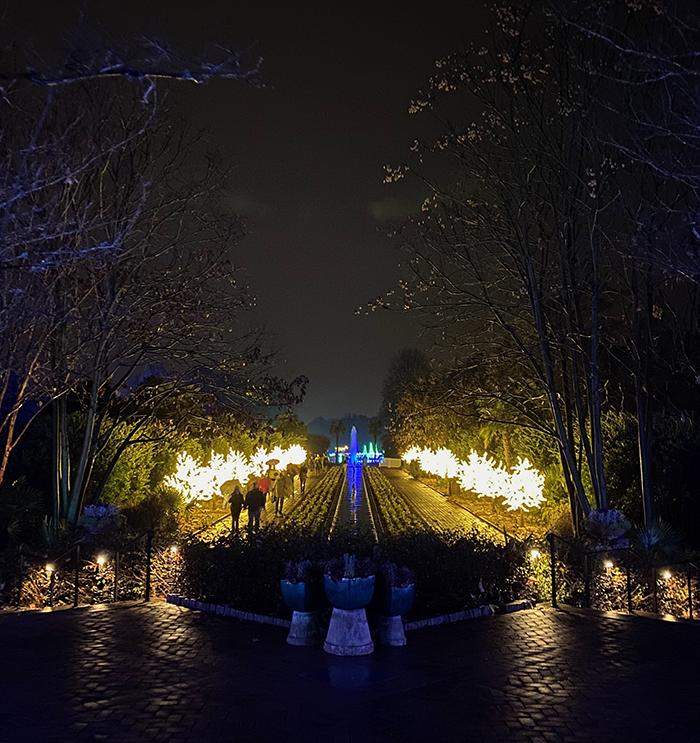 ending walkway lights at daniel stowe botanical garden lights