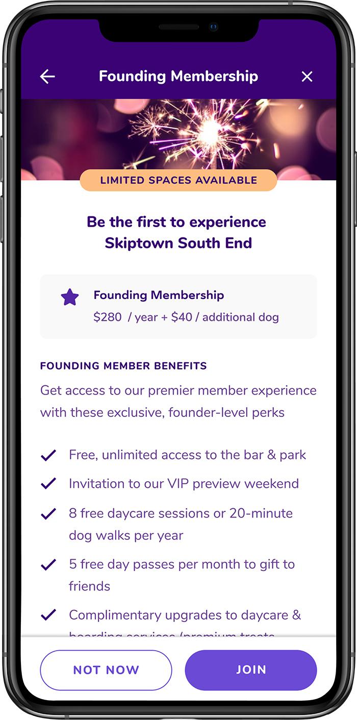founding member app skiptown