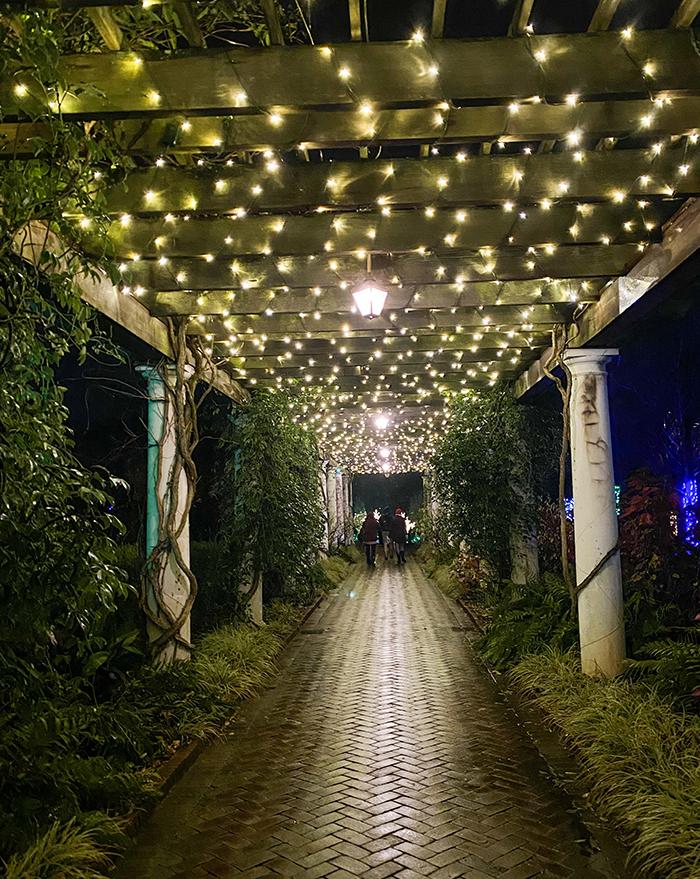 hallway of holiday lights at daniel stowe