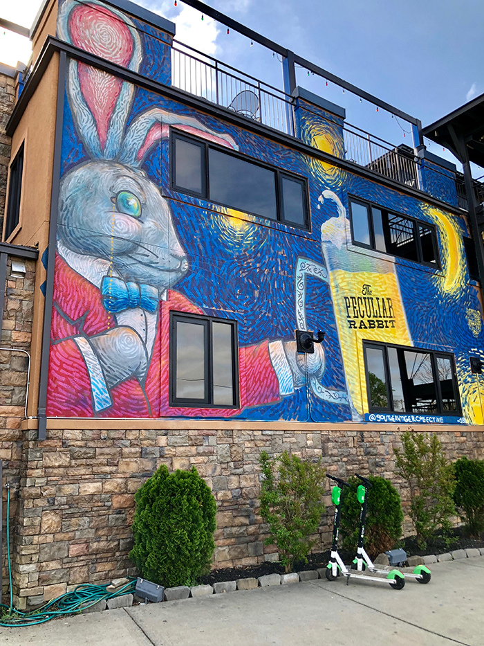 peculiar rabbit Plaza Midwood