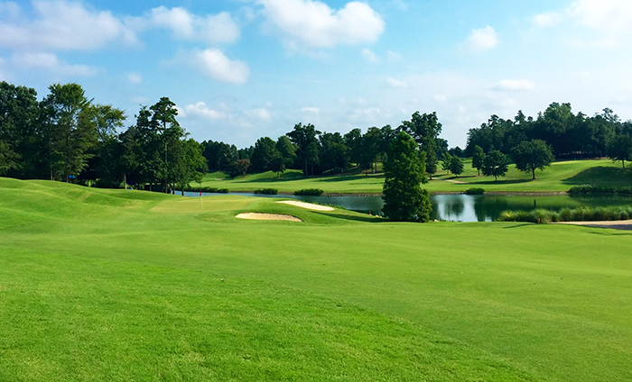 ballantyne golf club hole 14