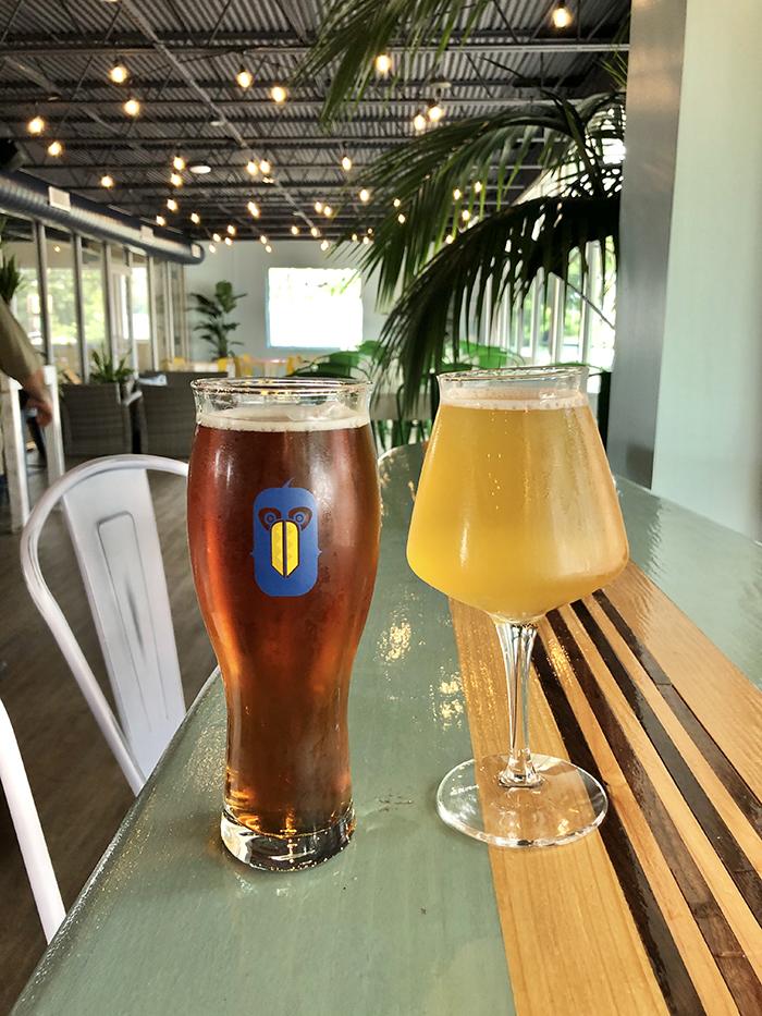 toucan louies sunstead brewing beer