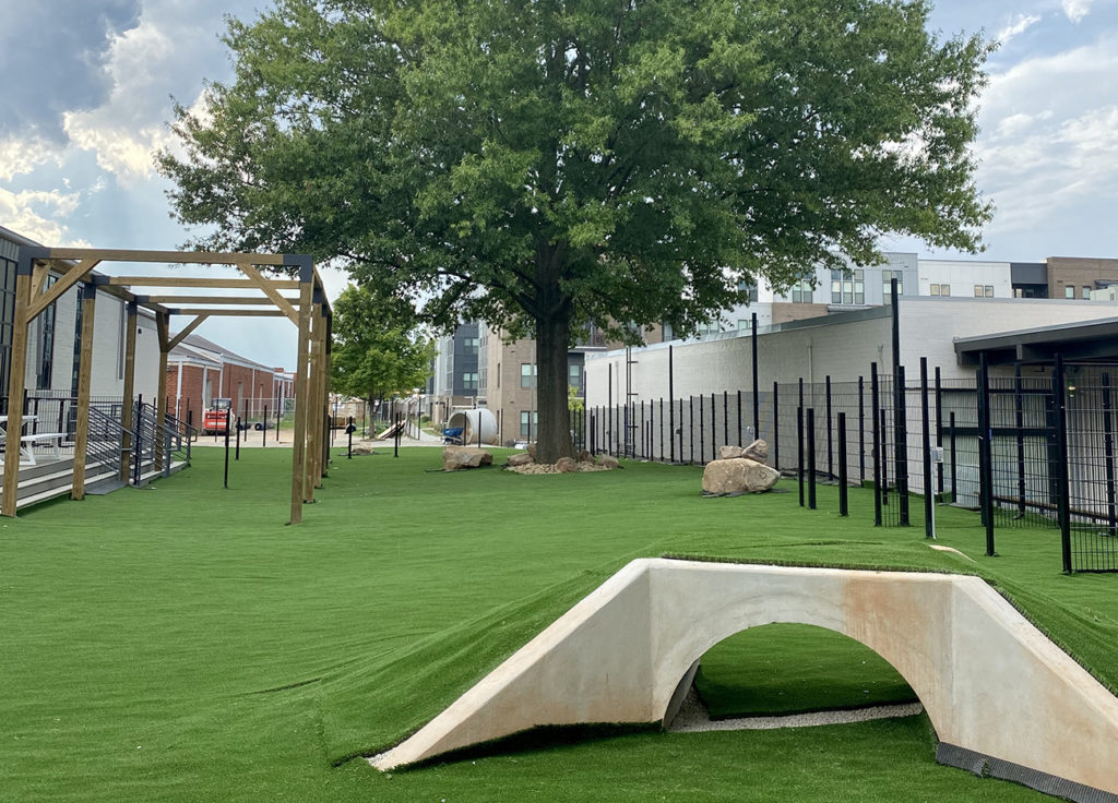 See inside Skiptown, a 24,000-square-foot dog park and bar, opening Monday in South End