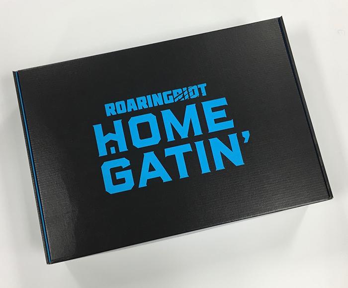 homegatin subscription box
