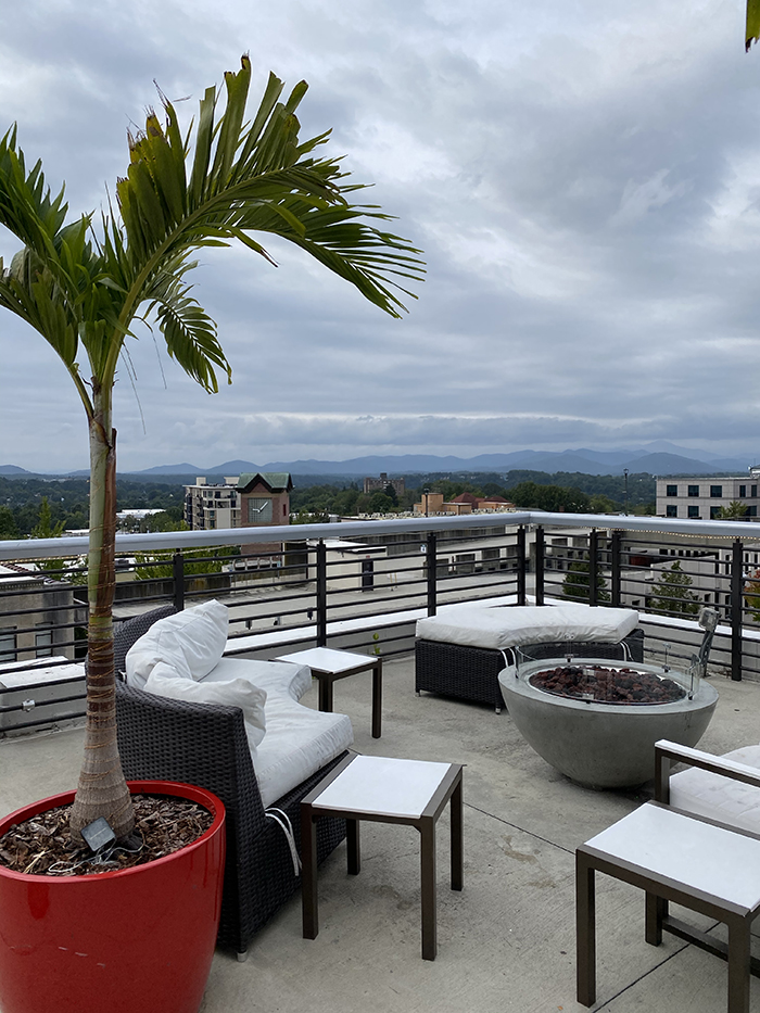 cambria hotel rooftop bar restaurant