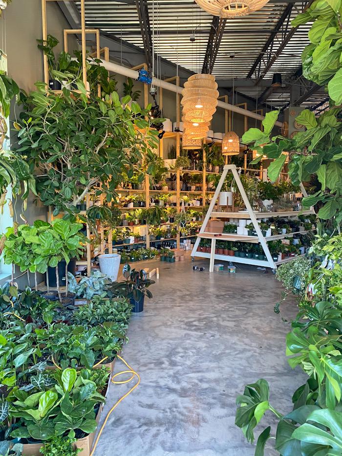 PlantBar Interior