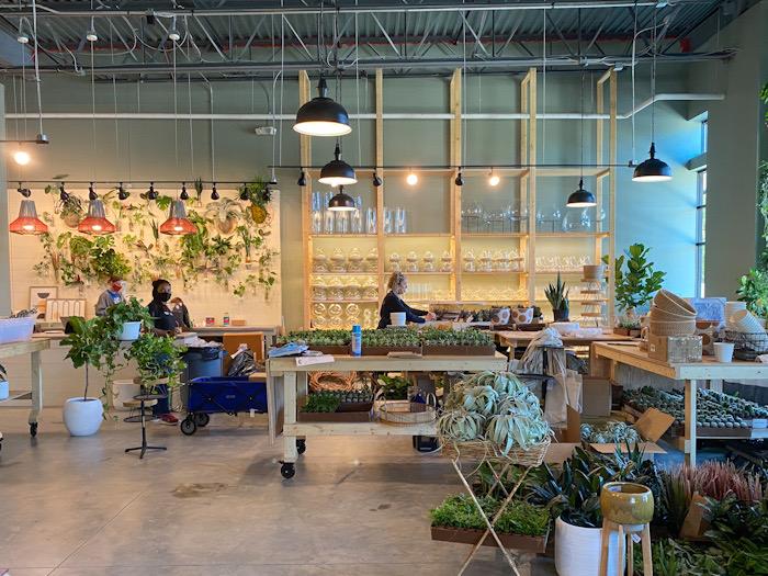 PlantBar terrarium wall
