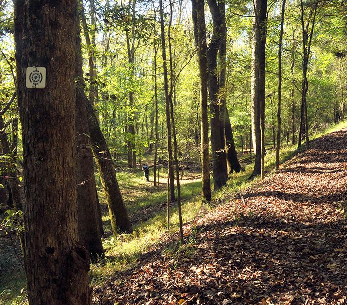 Pharr Family Preserve Trail - scenic