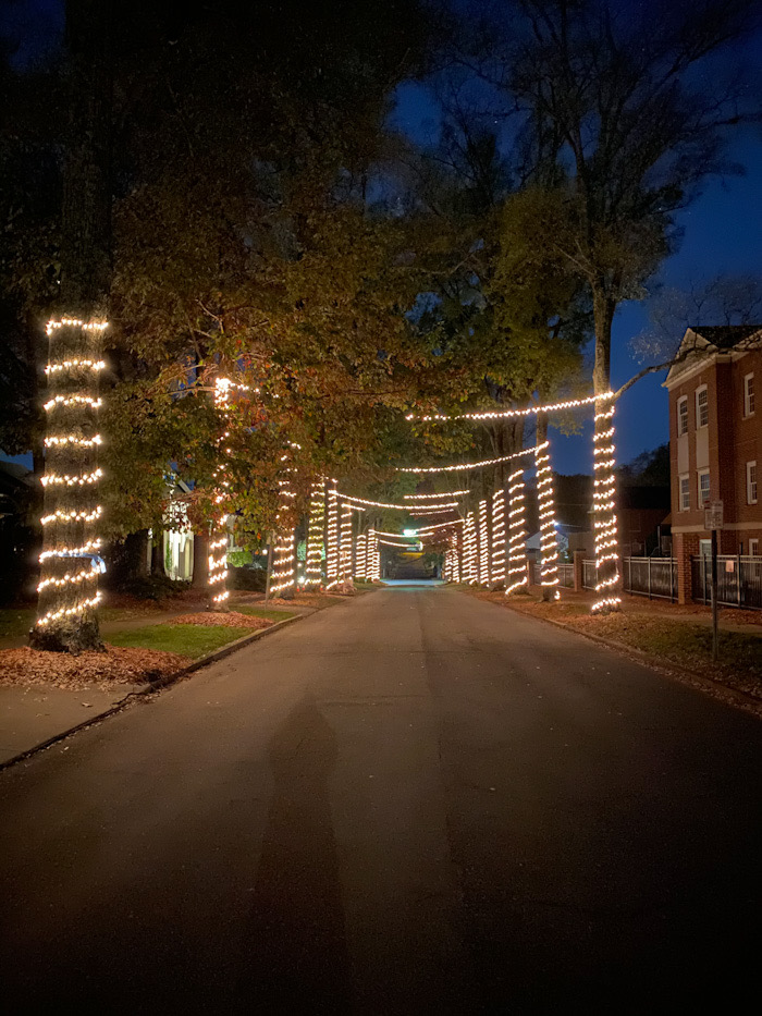 Holiday lights, Christmas lights