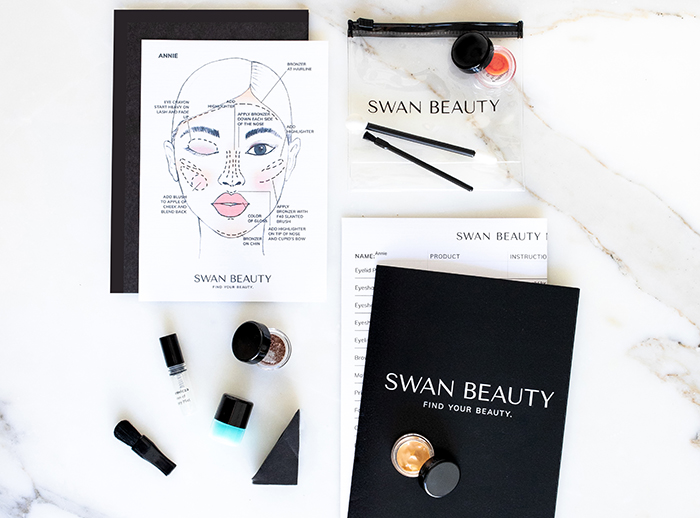 lindsey regan thorne swan beauty face chart